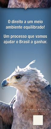 014-aguia