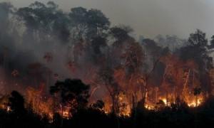 Equipes tentam controlar fogo no parque desde segunda-feira. Foto: Pedro Kirilos / Agência O Globo