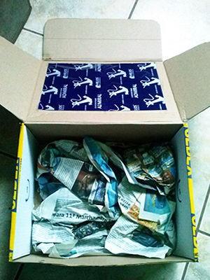 Caixa tinha folhas de carbono e CDs para tentar evitar identificação. Foto: Polícia Ambiental/ Várzea Grande-MT