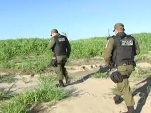 Polícia Militar também atua na ilha para evitar a ação predatória. Foto: Reprodução/TV Tapajós