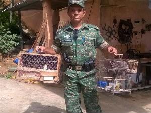 Idoso é apreendido com aves silvestres em Muriaé. Foto: Sargente Madriaga/Divulgação