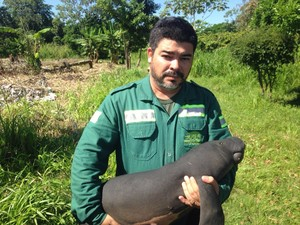 Animais foram resgatados e estão no Zoofit (Foto: Divulgação/Zoofit)