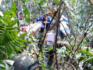 Onça ficou dentro das dependências no Parque Chico Mendes. Foto: Divulgação/Batalhão Ambiental