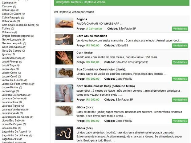 Site tem anúncios de venda de diversos tipos de cobra, entre outros animais silvestres (Foto: Reprodução/BrasilPetShop)