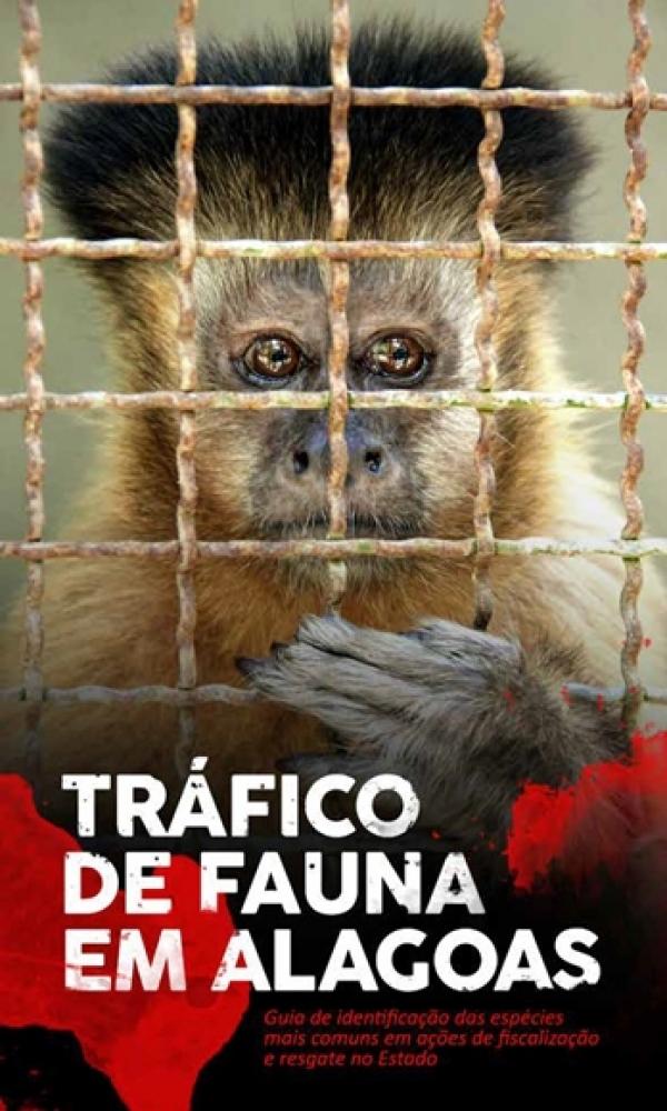 Trabalho apresenta levantamento realizado sobre os animais que passaram pelo Centro de Triagem de Animais Silvestres