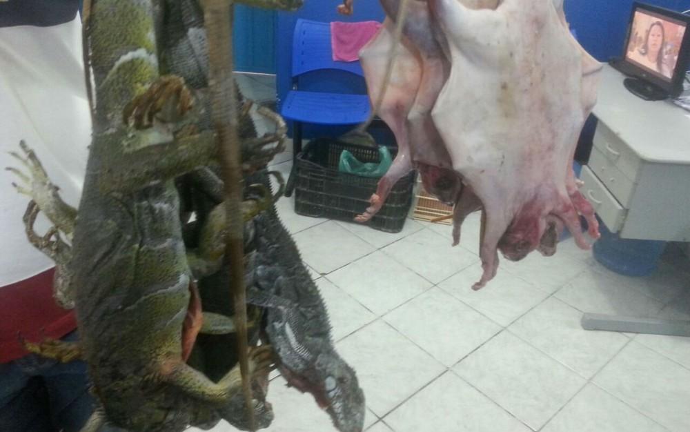 Carne de animais seria vendida em feira livre na cidade de Itatim (Foto: Divulgação/Polícia Civil)