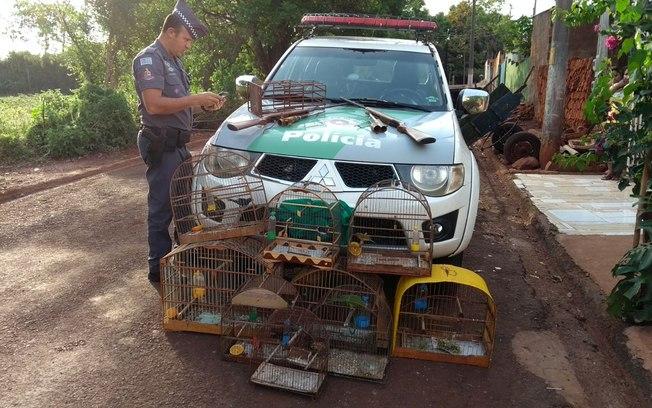 Divulgação/Polícia Militar Ambiental
