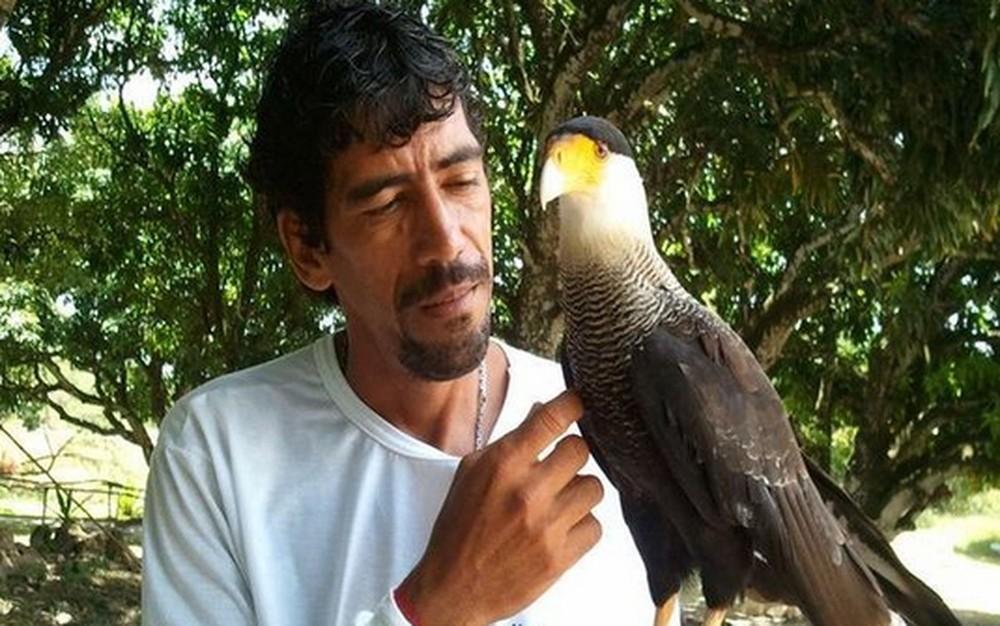 Percilio trabalha na criação e recuperação de aves no Parque dos Falcões (Foto: Denise Gomes/G1)