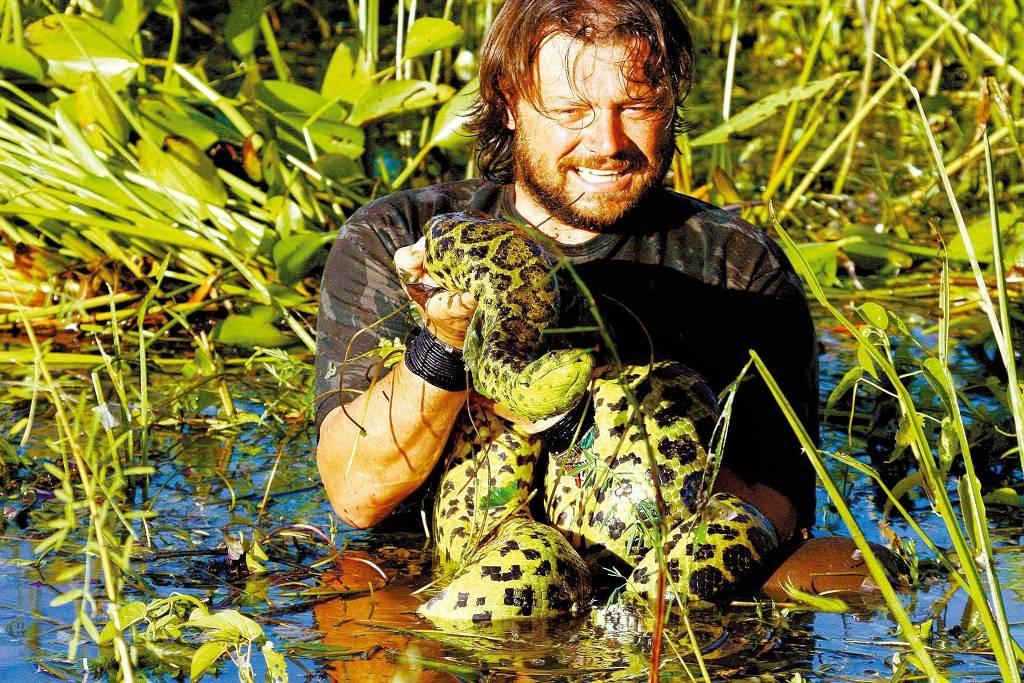 Richard Rasmussem pega sucuri-amarela em banhado às margens da rodovia Transpantaneira  em programa de TV - Sabrina M. Rasmussem/ Divulgação.