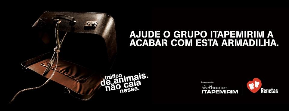 <!--:en-->Campaign: Animal Trafficking not fall into this trap<!--:--><!--:pt-->Campanha: Tráfico de Animais Não Caia Nesta Armadilha<!--:-->