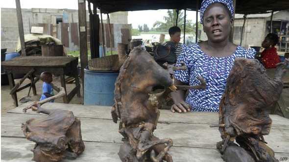 A carne defumada de animais selvagens é vendida livremente em países africanos.