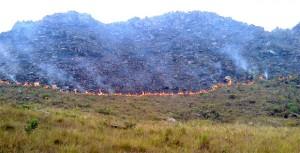 Somente na terça-feira, 2 mil hectares de vegetação foram destruídos. Foto: Divulgação/Vanessa Carvalho
