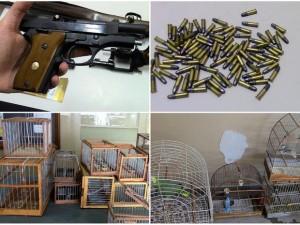 Arma, munição, armadilhas e pássaros apreendidos durante a operação. Foto: Osni Martins/Arquivo pessoal