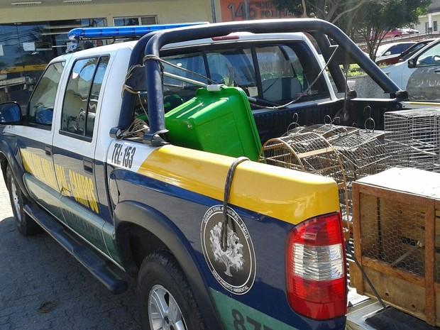 As aves de diversas espécies serão reinseridas na natureza. Foto: Divulgação/ Ascom