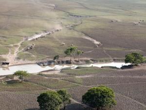 Vista aérea de Reserva Biológica do Guaporé em RO invadida por búfalos. Foto: Sedam/Divulgação