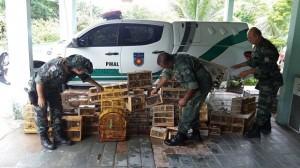 Polícia Militar apreende 221 pássaros em Arapiraca. Foto: Divulgação/BPA