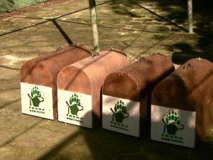 Animais foram levados para área de preservação com 5 mil hectares em Matão. Foto: Valdinei Malaguti/EPTV