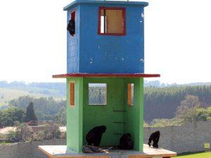 Criado em 2000, santuário recebe animais em condições inadequadas; o G1 esteve no local em 2014 e conheceu o trabalho feito no local. Foto: Geraldo Jr./G1/Arquivo